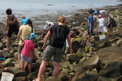 People participate in Project Oceanology